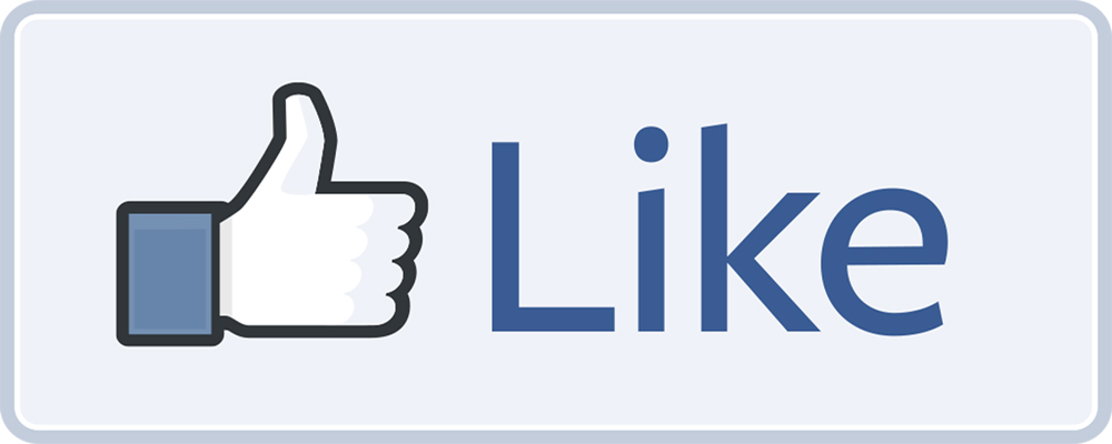 I will give 1500 likes on your FaceBook page at most 5 days for $5
