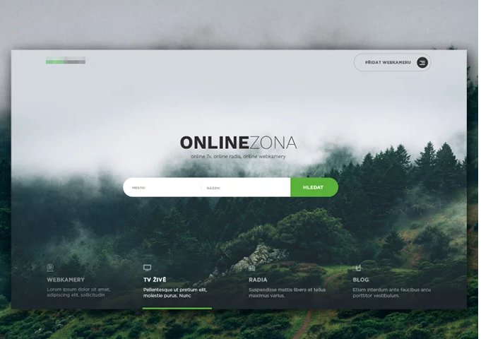 I will design web site and responsive user interface