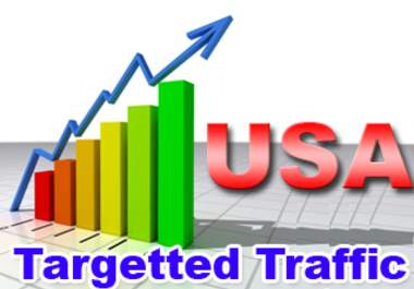 Send 50,000 + USA Web Traffics with Google Search Engine and Social Media